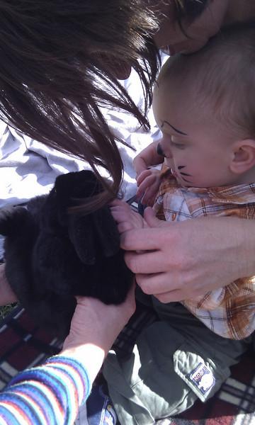 Patting the bunny rabbit