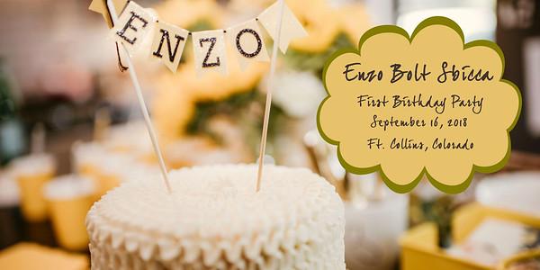 Enzo's 1st Birthday Album