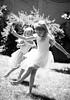 fairies-2546