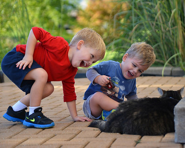 Two Boys with Cat September 2012