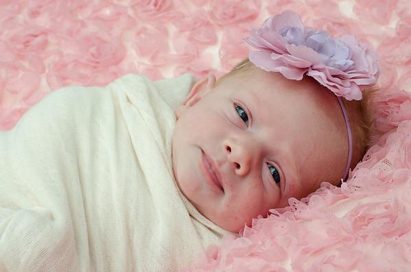 Farrah~Newborn