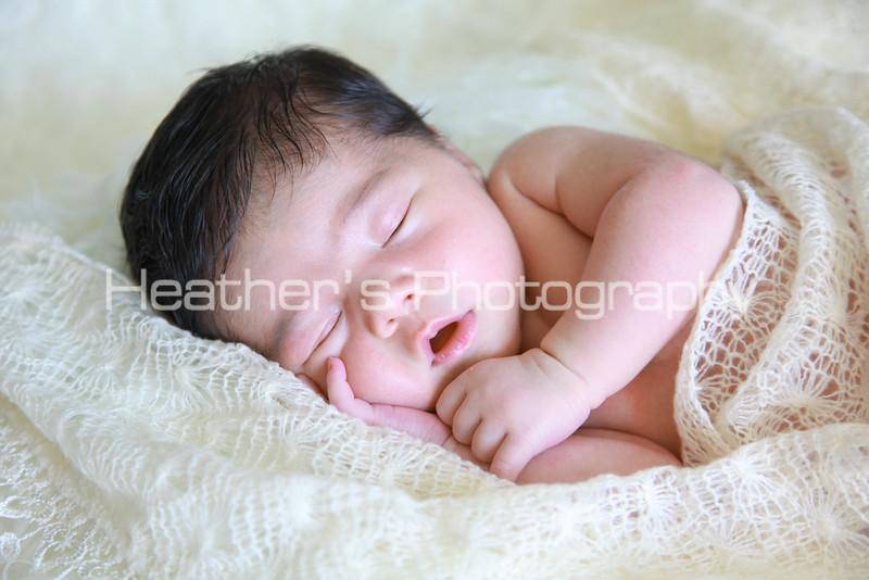 Farah's Newborn Portraits_003