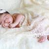 Farah's Newborn Portraits_007