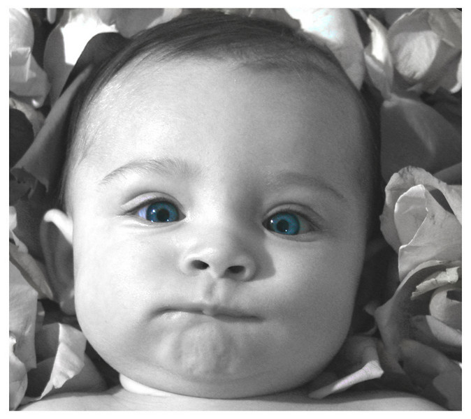Baby - Blue Eyes - Cherry Hill, New Jersey