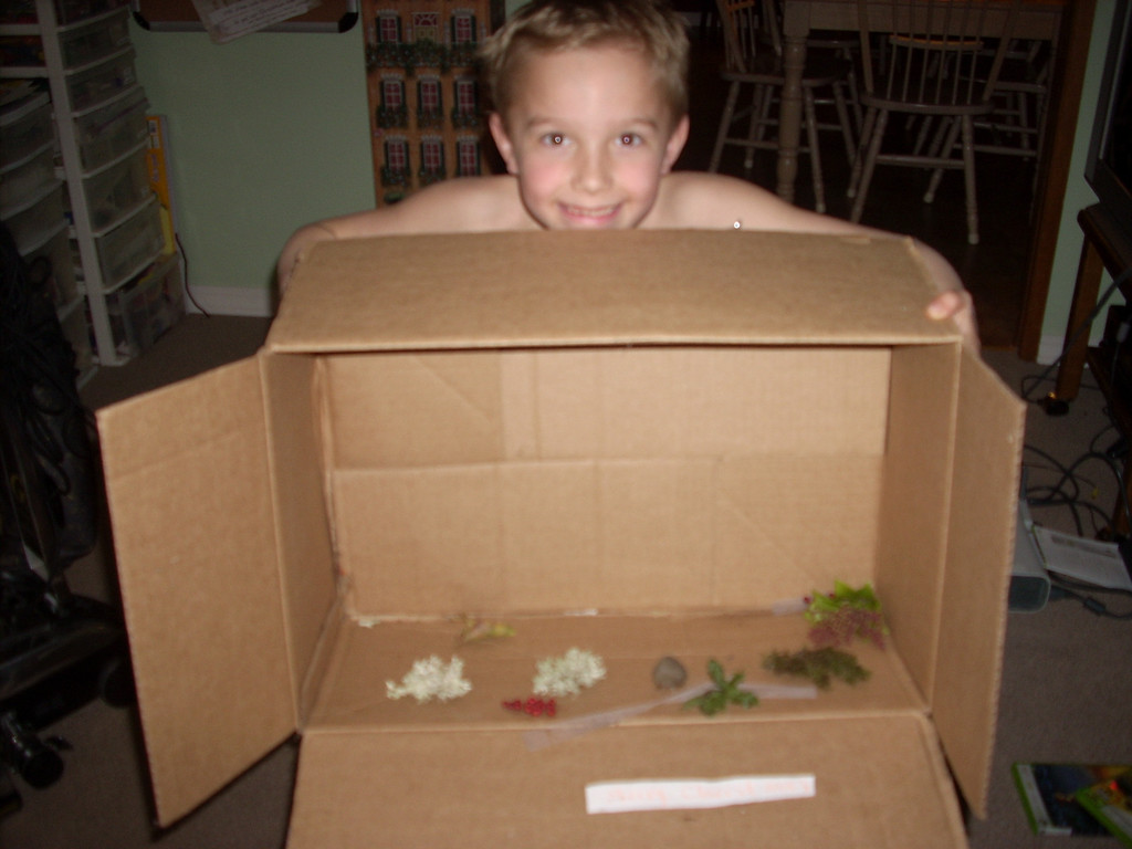 Ian's specimen box for me