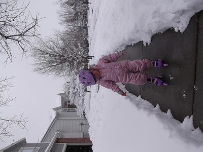 February 2012 - the Mexican Blizzard
