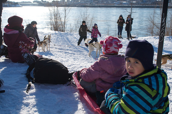Jaden and Cyane had their own sled pulled by their own dog (me).