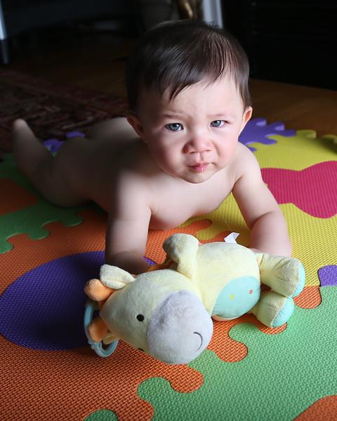 Gabriel 7 months