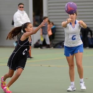Glenora College Pink Netball
