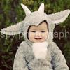 Griffin- 6 months :