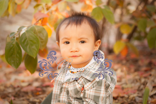 Gunnar's 9month Session