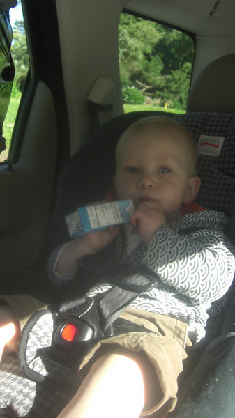 First juice box in the car, in the forward facing car seat. No more baby here!