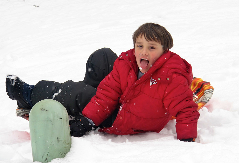 David just loves to eat the snow as it falls from the sky...