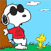 Snoopy Joe Cool