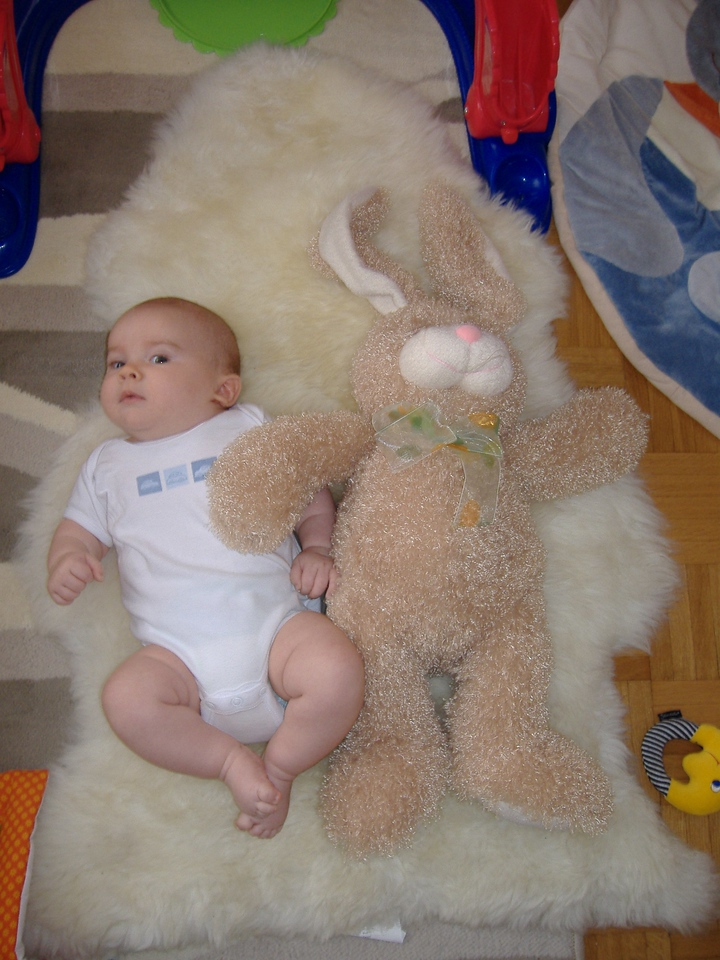 The Easter Bunny that Grammy & Paw-Paw sent. It's a little bigger than Jack!