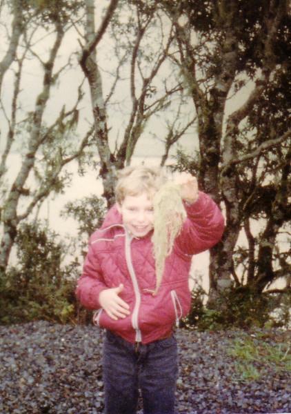 Spanish Moss 1st trip to CA Christmas 1983