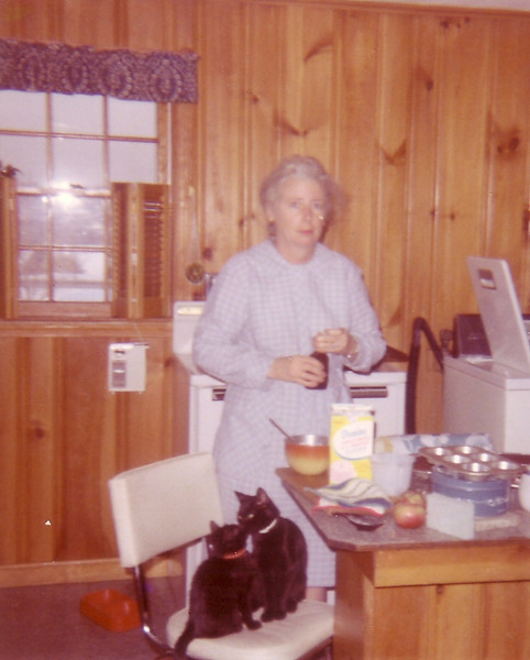 Jean in kitchen at Riverview Terrace w/my cat Sam and her kitten