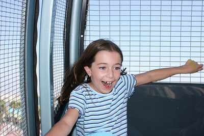 Katie enjoying the ferris wheel at California Adventure.