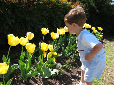 Kevin at 22 months old checking out the flowers at the park.