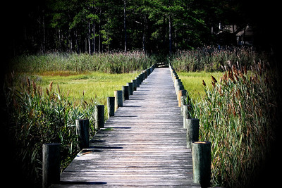 This is the pier to the crabbing and fishing dock in Ocean Pines, MD.