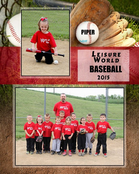 Baseball 1-810 team photo Leisure World Team 2015 team photo 367e Piper proof