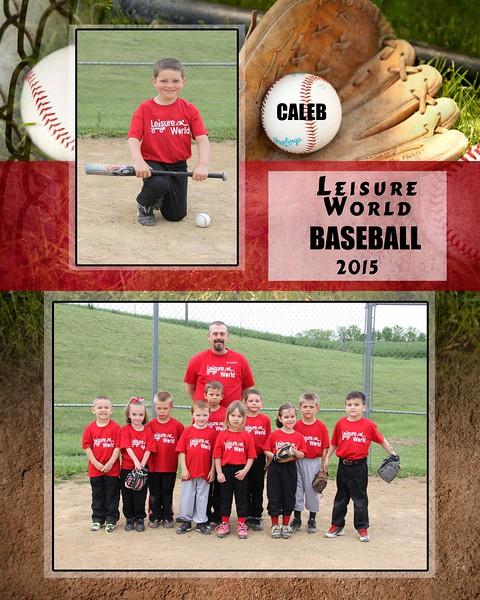 Baseball 1-810 team photo Leisure World Team 2015 team photo Caleb proof