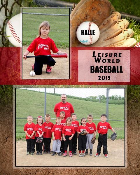 Baseball 1-810 team photo Leisure World Team 2015 team photo Halle proof