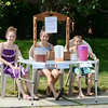 Violet Reynolds, 12, Olivia Martinez, 12, and Harry Reynolds, 10, sell lemonade in front of their home on Lindell Ave. in Leominster on a hot Monday afternoon. SENTINEL & ENTERPRISE / Ashley Green