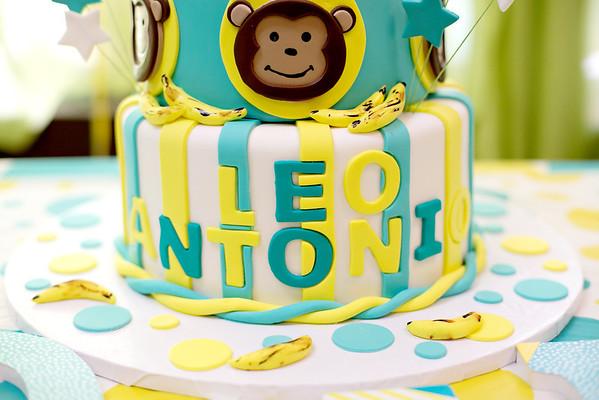 Leo birthday party