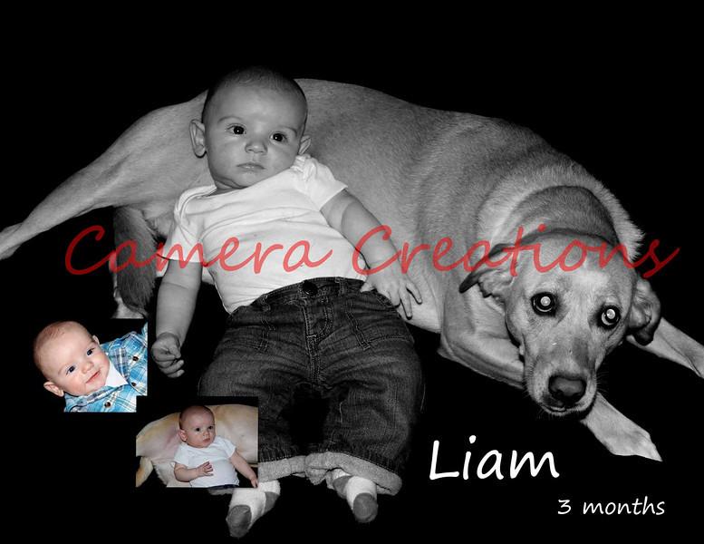 Liam 3mo C1 wwords
