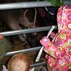 Saying hi to Rudolph at the La Grange Christmas Walk