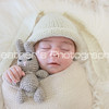 Lucy's Newborn Photos_010