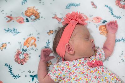 Lyla Newborn-3