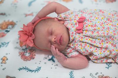 Lyla Newborn-5