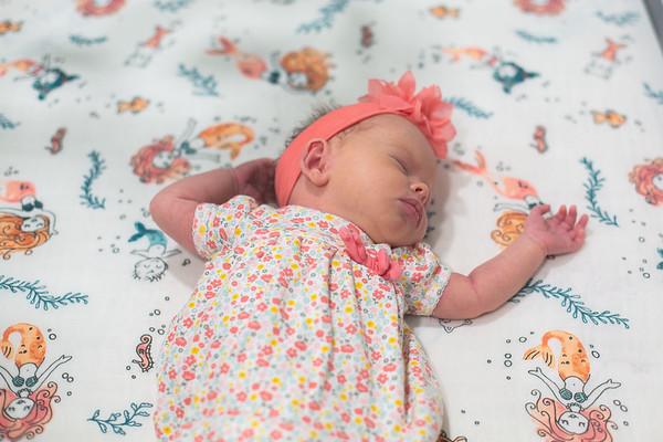 Lyla Newborn-1