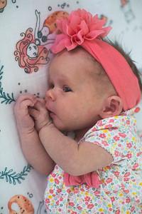 Lyla Newborn-8