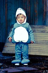 winkbug com-full_3095_21