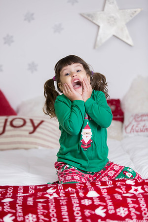 Maya's  Christmas Session 2017