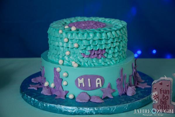 Mia's 1st Birthday Party
