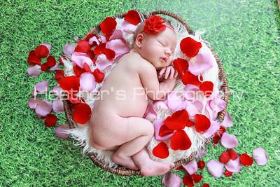 Mia's Newborn Gallery_249