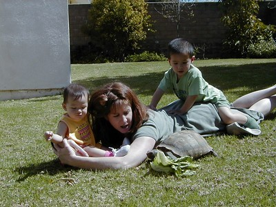 Kids, Turtle, and Mom