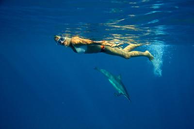 Mary_Dolphins_2015_Big_Island