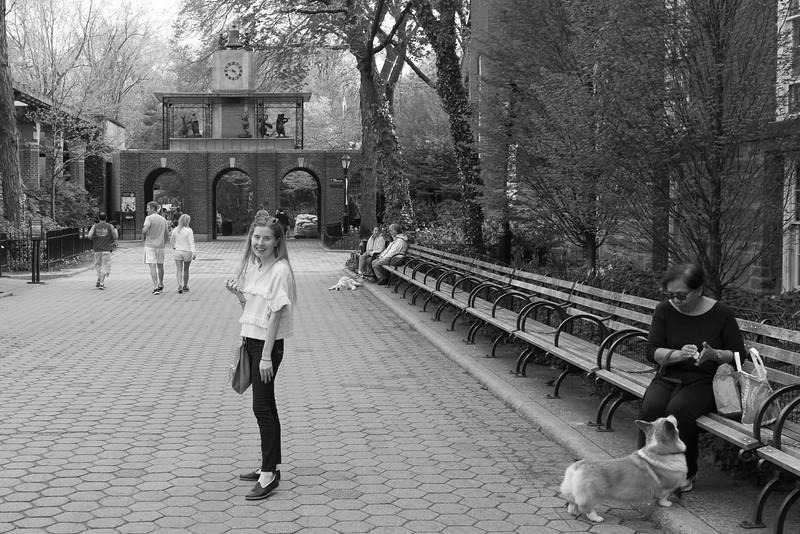 JJ in the Park