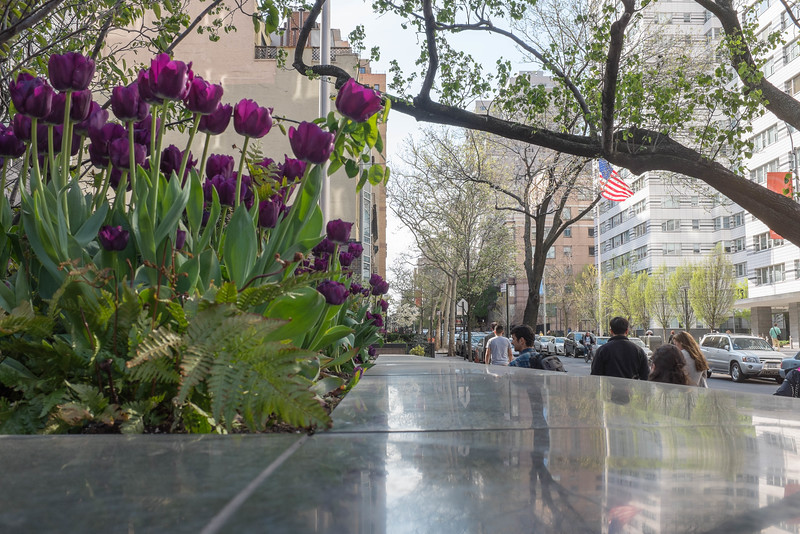 Spring on the Upper East Side NYC