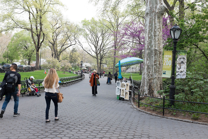 Fifth Ave side  of Central Park