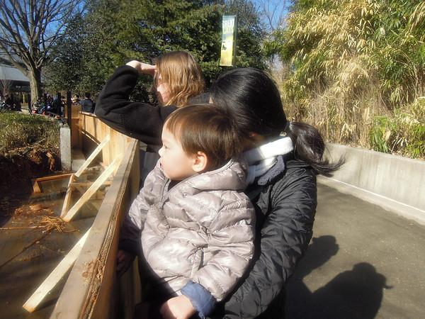 National Zoo 2-22-14