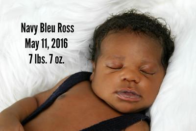 Navy Bleu Ross~Newborn