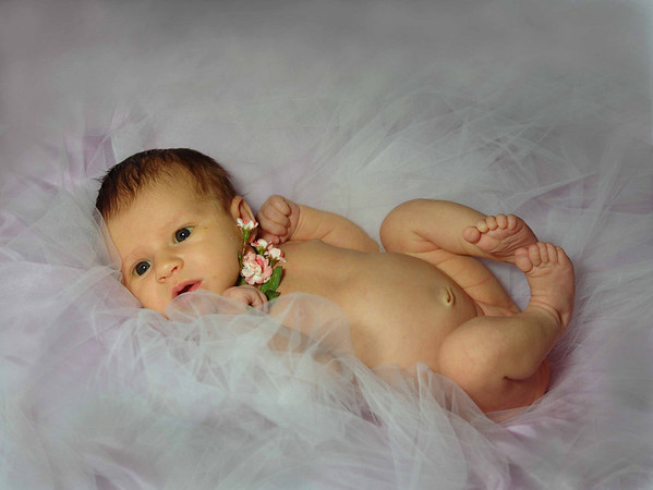 Newborn Photos of Madison
