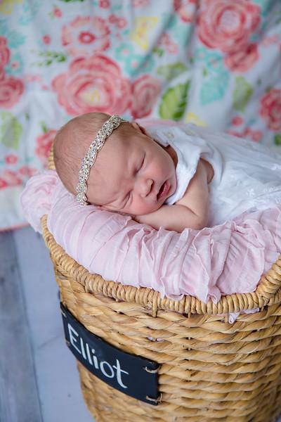 Baby Elliot Rose