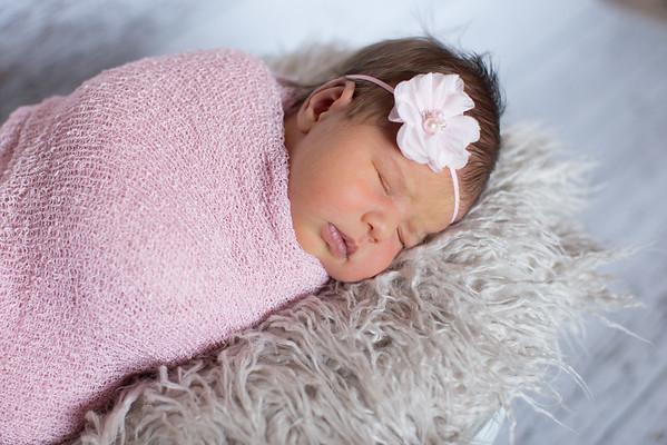 Baby Stella 2015
